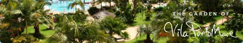 The Garden of Vila Porto Mare