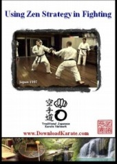 strategy in kumite fighting zen karate