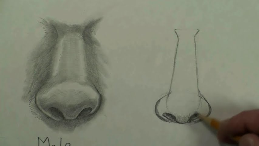 draw female nose step by step 3