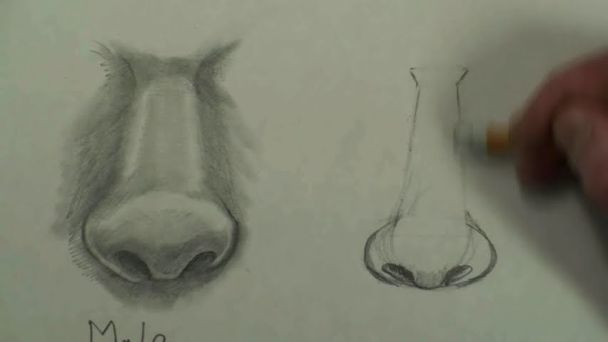 draw female nose step by step 4