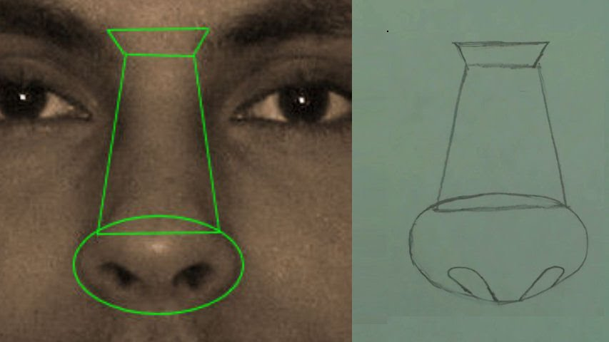 draw the male nose step by step 1
