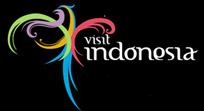 Visit Indonesia Year 2011!