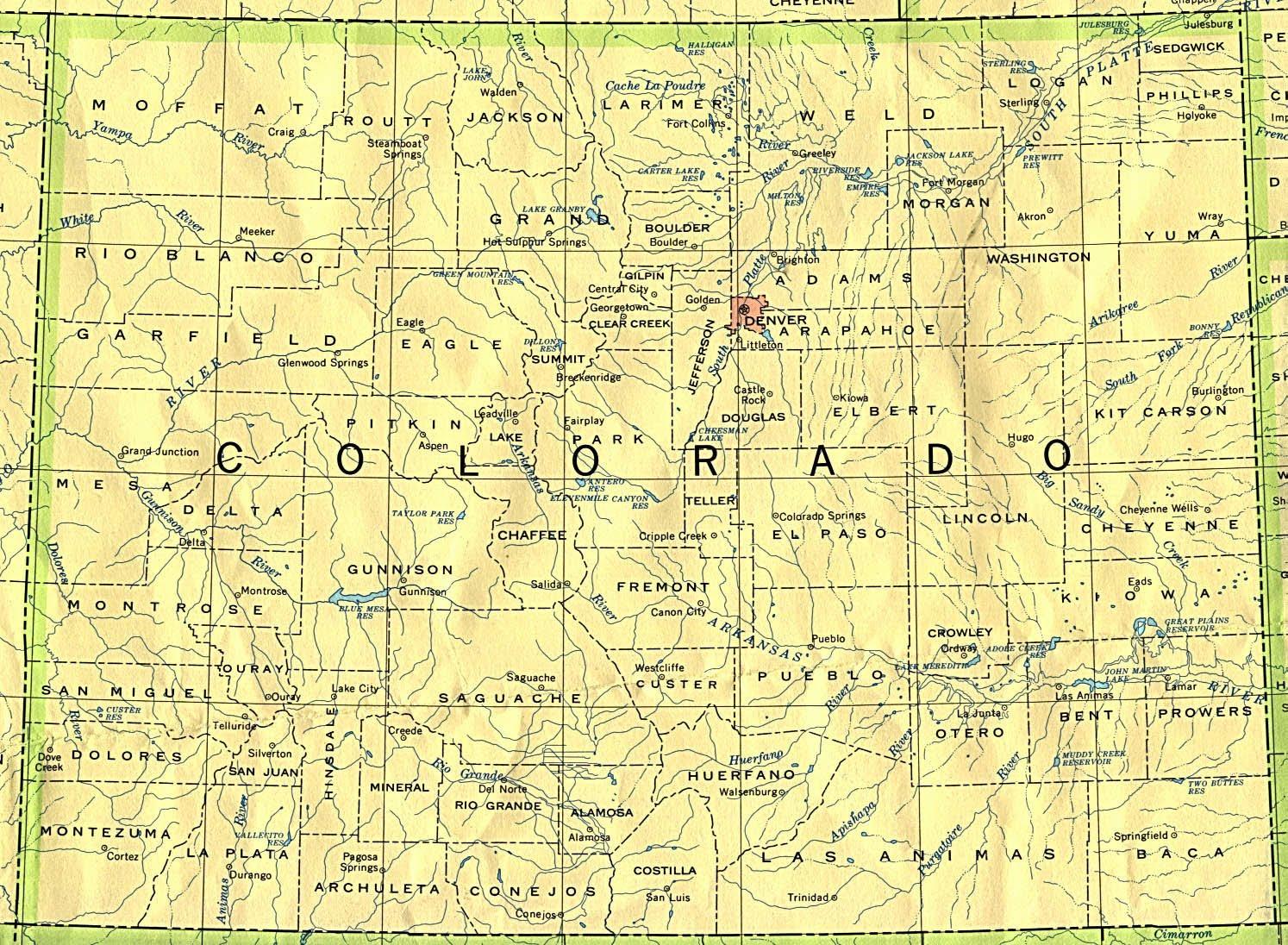 State bird lark bunting area codes 303 719 720 970 bordering states