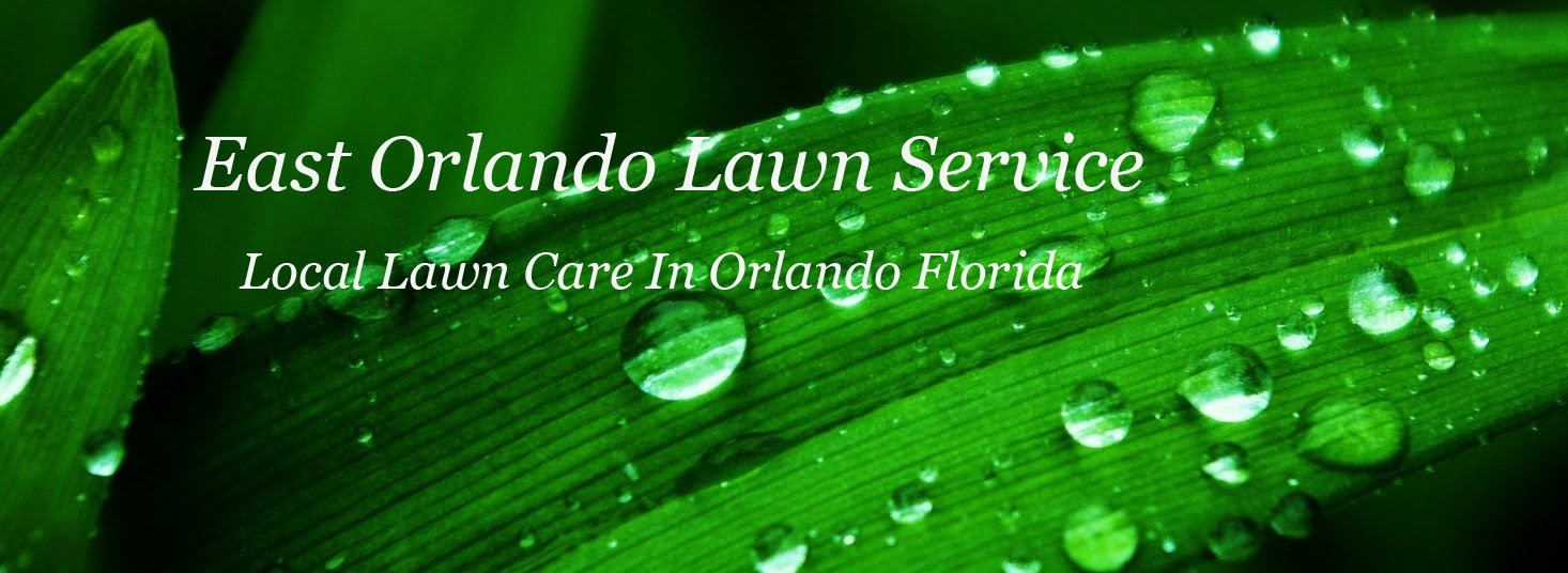 East Orlando Lawn Services