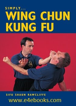 Kung Fu Movements Free Ebook Download