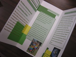 Prty Brochure   Political Party Brochures Ms Ehrlich S Class