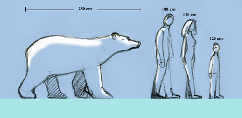 the physical characteristics behavior and habitat of the polar bear The complete polar bear facts for kids that will help you learn all about the polar bears learn all about polar bears, its scientific classification, physical characteristics, species, eyes, paws, size, weight, height, lifespan, fur, skin color, hibernation, adaptations, life cycle, appearance, habitat, diet, reproduction.