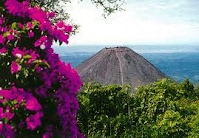 native plant and wildlife el salvador a country of promise