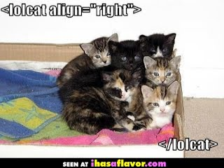 lolcat image from http://www.ihasaflavor.com/lolcat-align-right. Originally from http://icanhascheezburger.com/2007/06/12/lolcat-alignright/