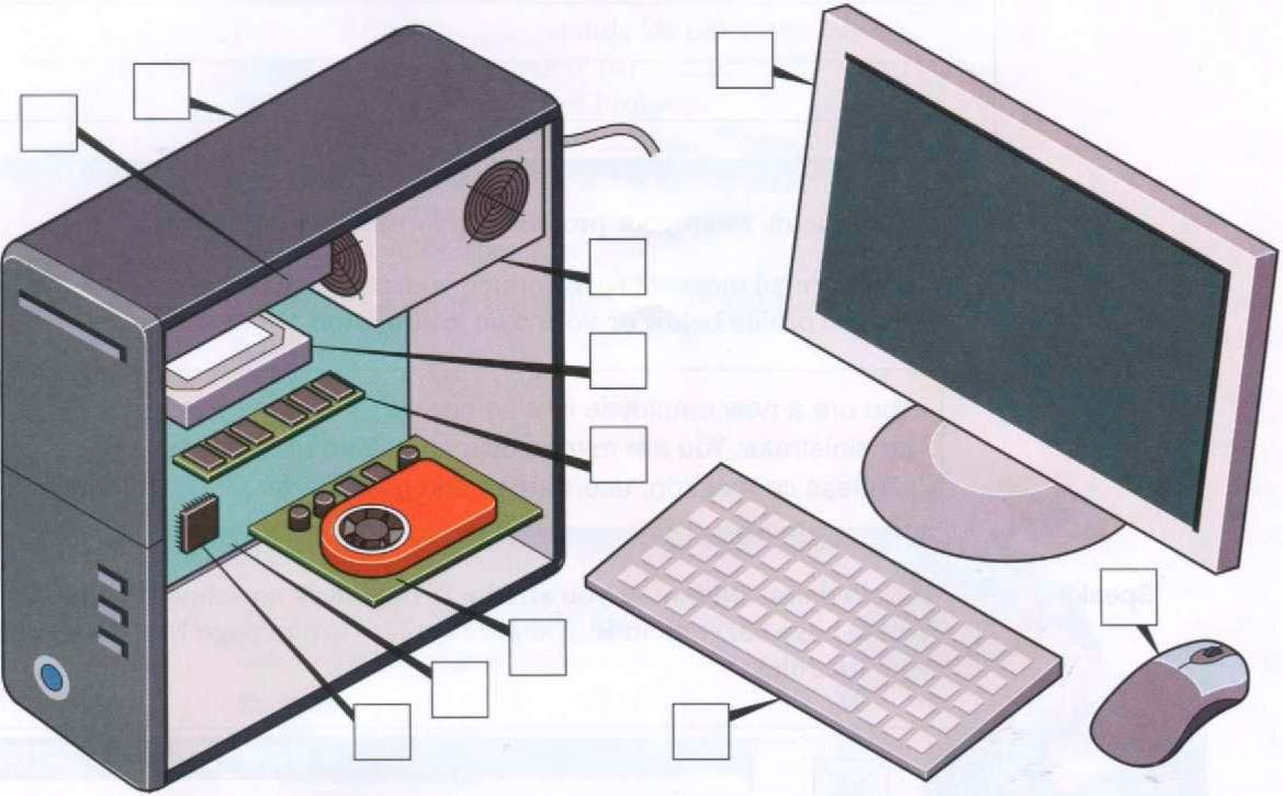 Software items computer systems