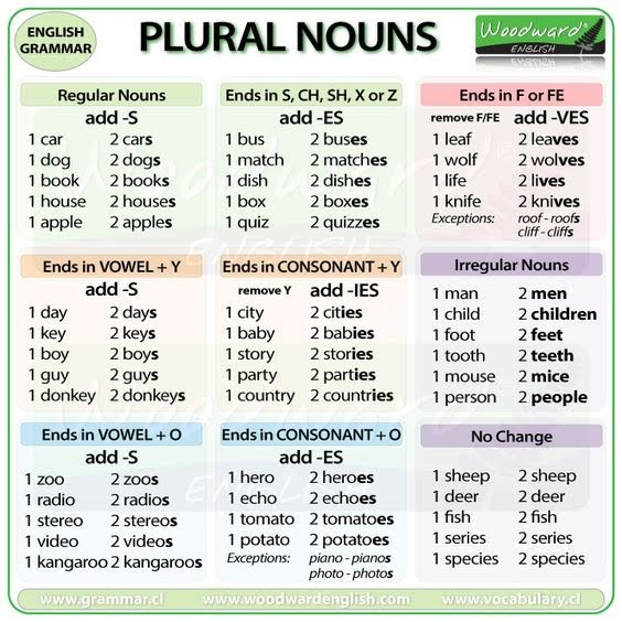 Irregular Plural Nouns - English and Reading with Ms. Summer