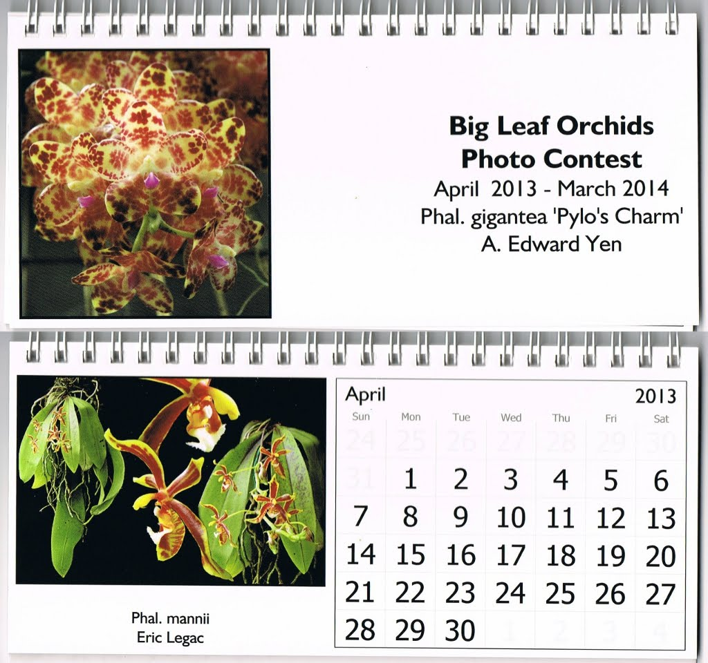 Central East Texas Orchid Society Newsletter vol.6 n°6 June 2013 Calendrier%20Big%20Leaf