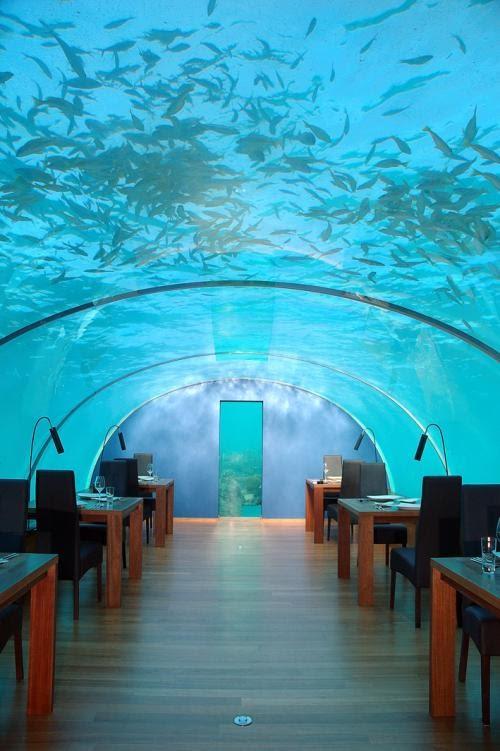 مطعم زجاجي تحت اعماق البحر