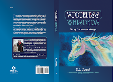 https://sites.google.com/site/expecttobeempowered/award-winning-books/voiceless-whispers/Voiceless_Whispers_Cover_MJ_Domet.png