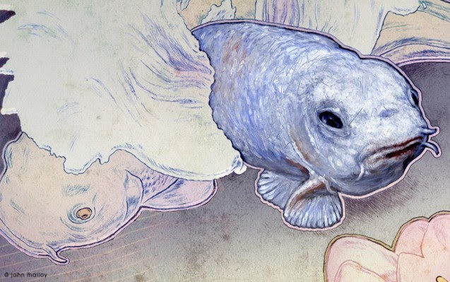 awesome colorized drawing of a fish jumping out of water