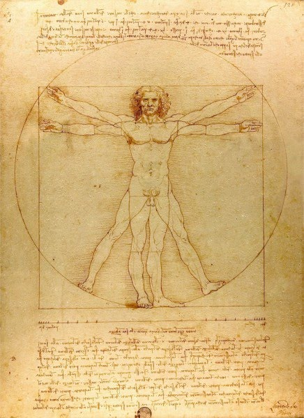 drawing leonardo da vinci virtue of man