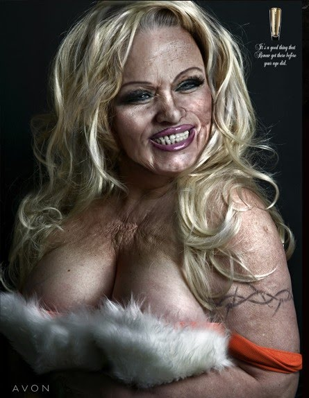 portrait photography of pamela anderson old