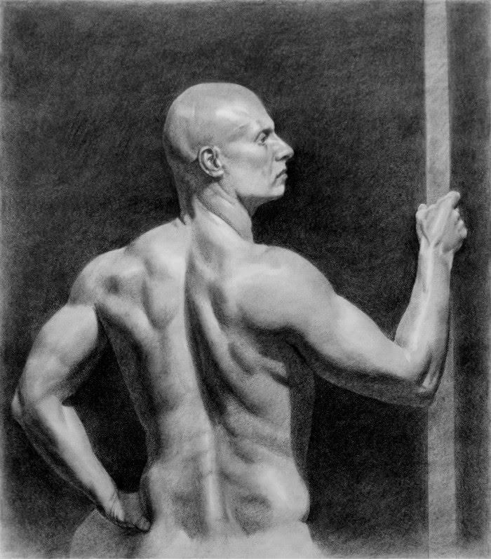 figurative drawing muscular man looking to the right by