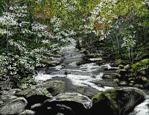 drawing of a beautiful creek in the forest by artist john stuart