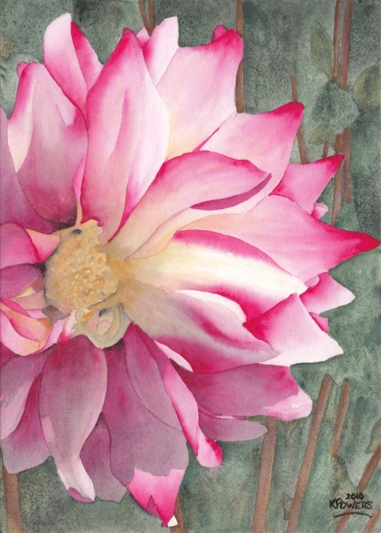beautiful watercolor painting of pink flower