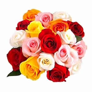 The Meaning Of Roses Flowers4unow