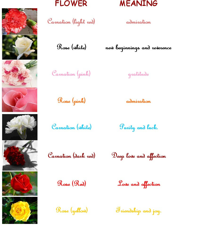 Flower Meanings: Flowers For The Right Occasion