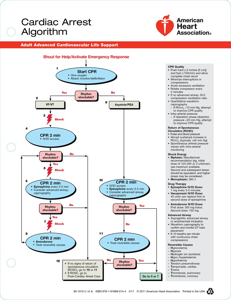 ACLS  Intern Survival Guide