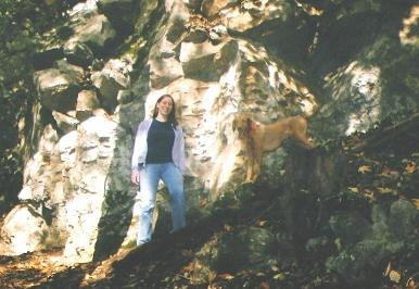 dog off leash in front of rock face while hiking