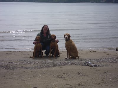 Angie at the beach with her dogs Gracie, Willow, and Louie