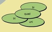 Cluster of prefixes