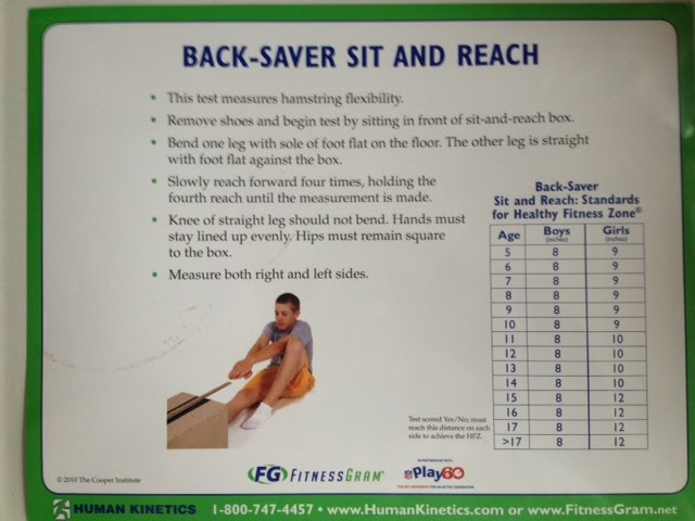 Back-Saver Sit and Reach - GEMS Elementary PE