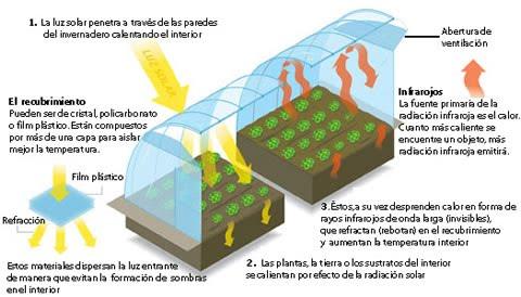 Gerardoarsan3g0 for Caracteristicas del vivero