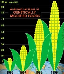 What are the pros of genetically modified foods?