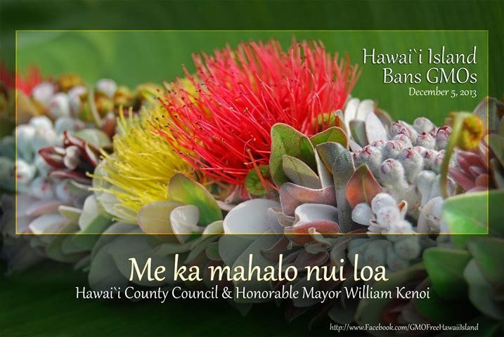 Bill 113, GMOFHI, GMOFreeHawaiiIsland, Hawaii Island, GMO Free, Margaret Wille
