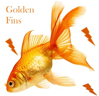 Common Reasons For Goldfish Death Goldenfins Thegoldfishguide