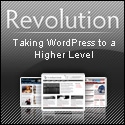 Superb Wordpress Theme from Revolution