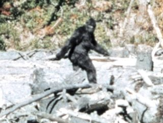 https://en.wikipedia.org/wiki/Bigfoot