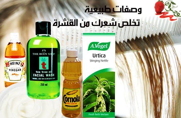 علاج الصلع وتساقط الشعر حقيقه وبأعشاب طبيعيه + اسبابه وعلاجه ونوع الاعشاب Ssharksrrra