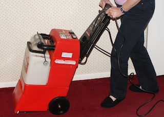 Professional vs do it yourself guaranteed carpet services while a good deep vacuum might remove most of the loose dirt and dust from your carpet professional cleaning is needed to imbedded dirt and to remove spots solutioingenieria Choice Image