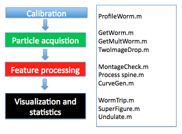 WormView modules