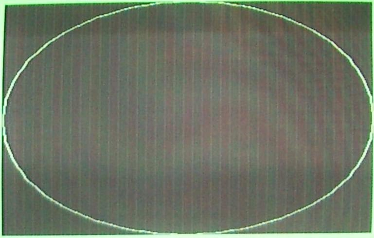 Picture of PAL VIC-IIe screen displaying 320x400 interlaced bitmap of a circle.