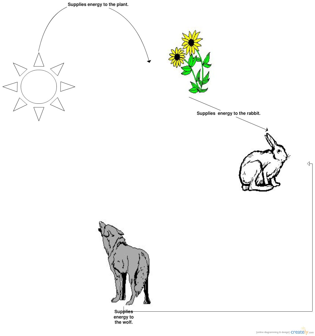 make a diagram of a pond food chain! habitatcreationprojectDiagram Of The Food Chain #9