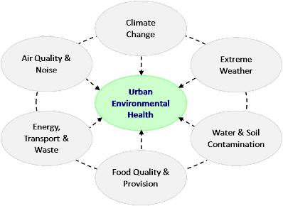 Figure 1: Environmental health challenges in cities