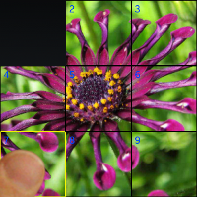 http://sites.google.com/site/hinthanllc/home-1/purp_flower9_crop_wfinger_icon.png?attredirects=0