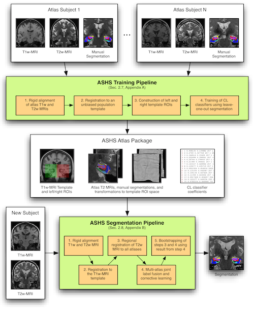 Building An Atlas Automatic Segmentation Of Hippocampal Subfields