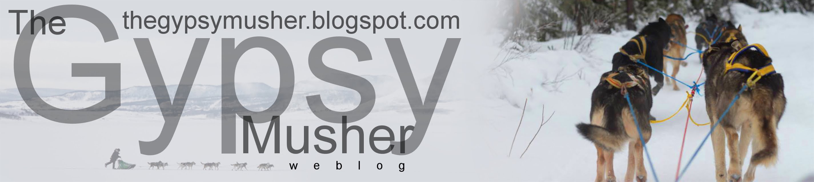 The Gypsy Musher-Weblog