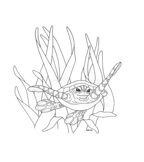 sea plankton coloring pages - photo#35