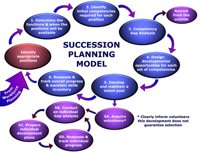 Succession planning human resource management for Employee succession planning template