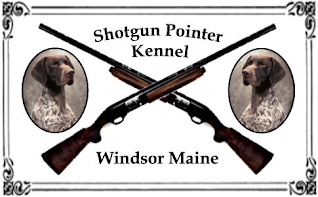 Shotgun Pointer Kennel Logo