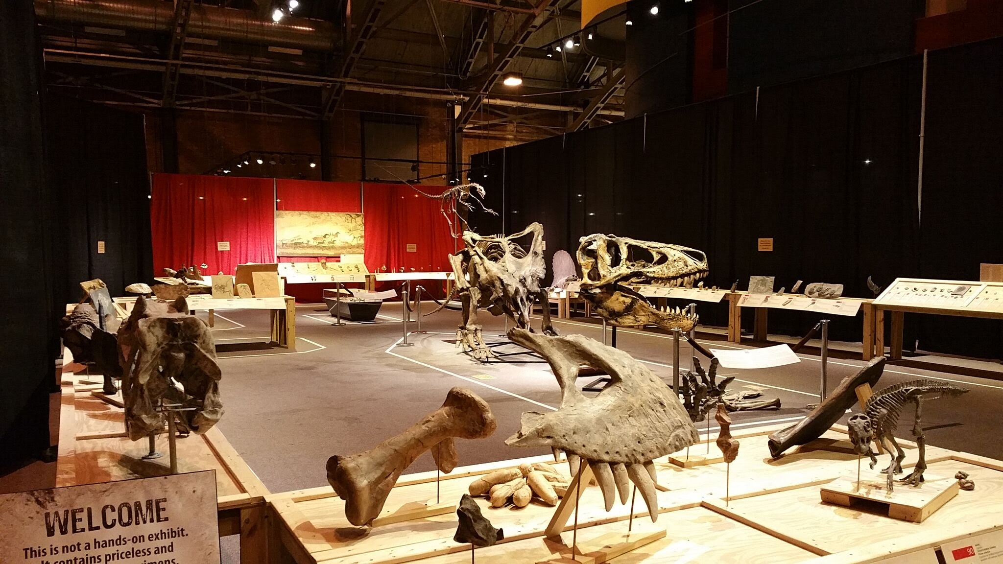 Museum of Science and Technology, Syracuse, NY
